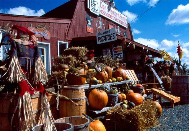 Fall In Maine Wallpaper Mainefoliage Com Photo Gallery