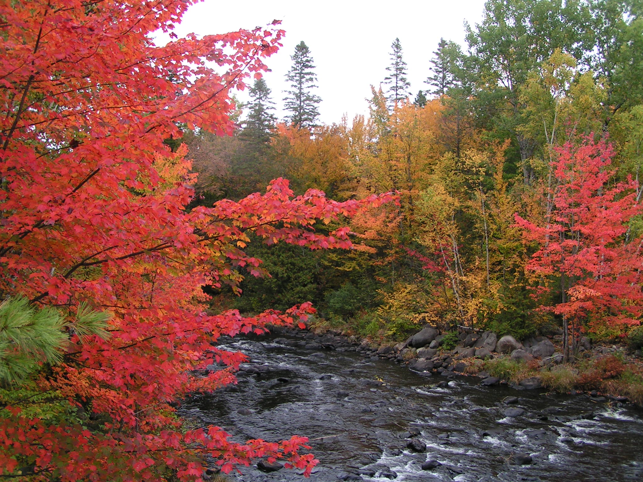 October Fall Wallpaper Mainefoliage Com Photo Gallery The Best Of The Years Past