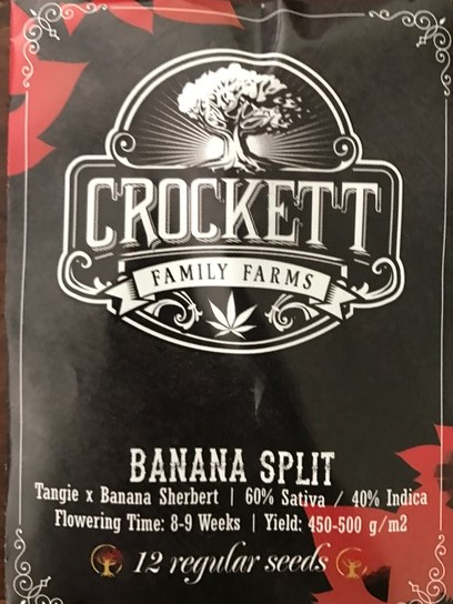 Seeds in stock: Crockett Family Farms and DNA Genetics
