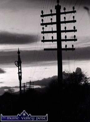 The railway posts were quickly stripped of their copper wire - through which the wind made amazing music. ©Photograph: John Reidy 12-6-1982