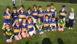 Boys and girls of the Cordal U-6 team on the occasion of their first friendly 'away game' in Castleisland. Photograph: Gerdie Murphy