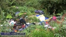 One of the dumping black-spots in Glountane. ©Photograph: John Reidy