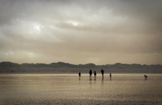 ©Photograph: Breda McGaley, Castleisland Camera Club.