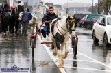 Prancing in the Rain: The conditions didn't bother this rig driver at Friday's annual November 1st Horse Fair Day in Castleisland. ©Photograph: John Reidy