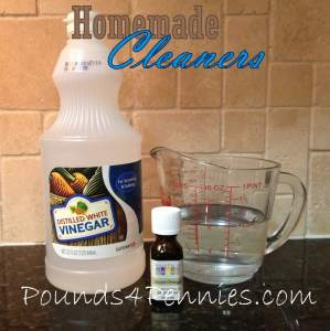 Homemade Cleaners: Multi Surface Cleaner