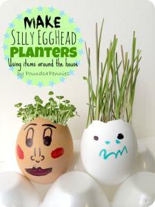 Eggshell Planter : How to Grow Silly Egghead Hair