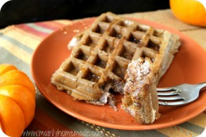 Easy Blender Gluten Free Waffle Recipe Made in One Minute