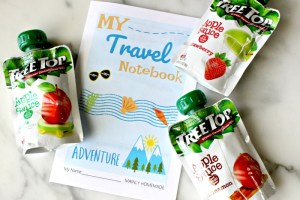Kids Travel Notebook with snacks