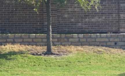 Stone Masonry Retaining Wall