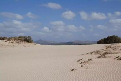 the-perfect-white-dunes-of-morrinho-bg