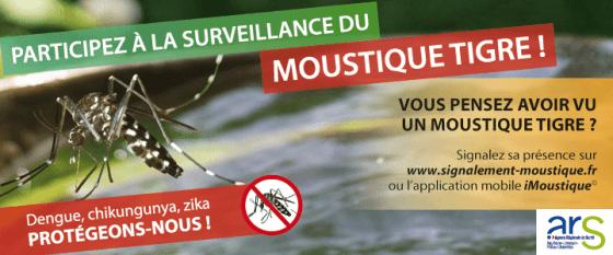 banniere_720x300_moustiques_0