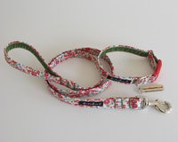 poppy dog lead