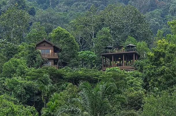 Templer Park Rainforest Retreat Selangor - 1