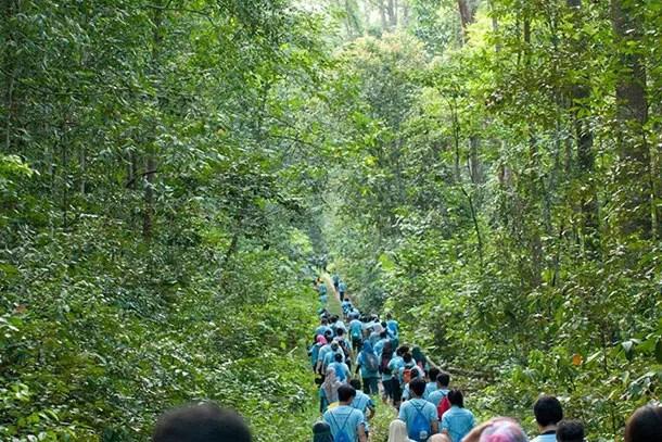 Hutan-Simpan-Sungai-Menyala