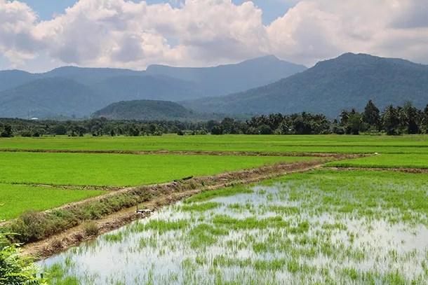 Tempat Menarik Di Kedah - Featured Image