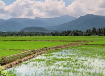 50 Tempat Menarik Di Kedah Untuk Percutian Yang Sempurna