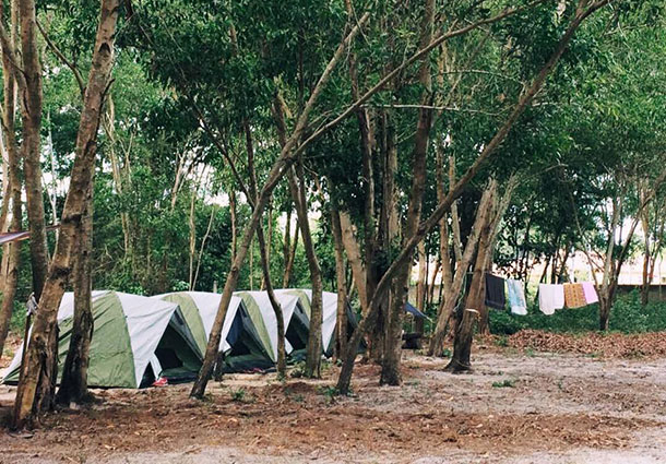 Ant Beach Camp - Tent Area