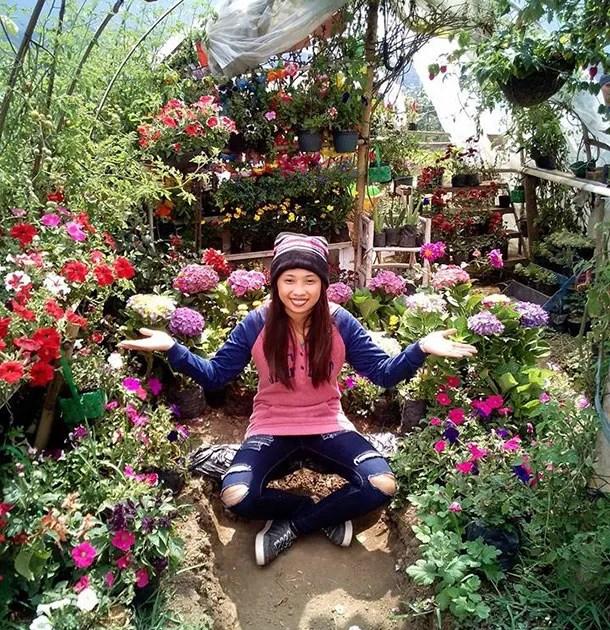 Rose & Strawberry Garden Kundasang