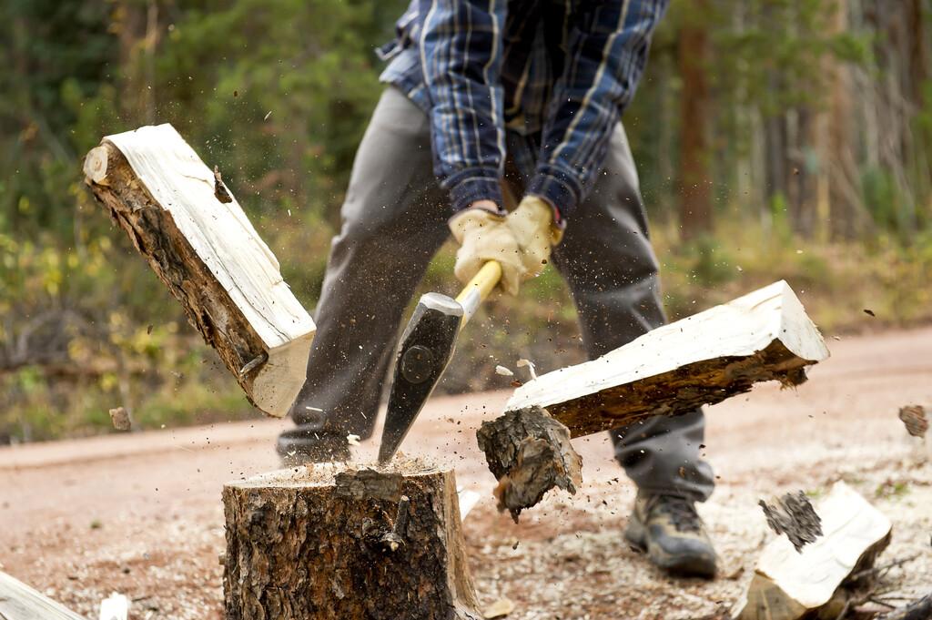 bien choisir votre bois de chauffage