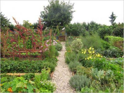 Jardin potager 2010 - SNHF