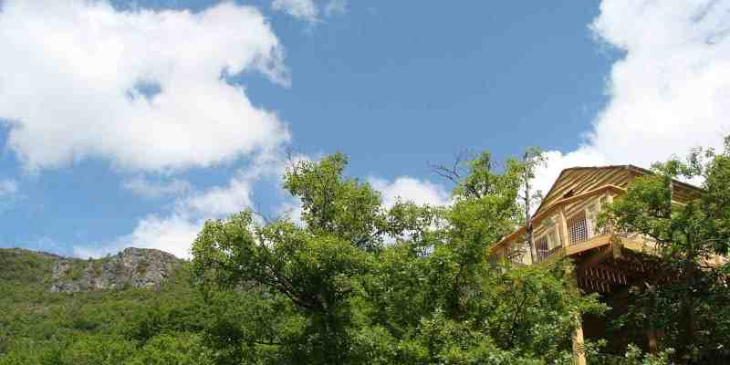 A vendre domaine avec cabanes dans les arbres & Spa au cœur du Parc National des Cévennes (Vébron, Lozère)