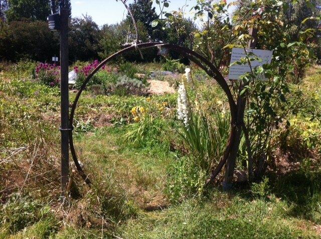 le-jardin-mandala