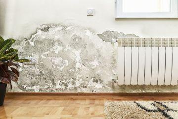 Humidité mur maison