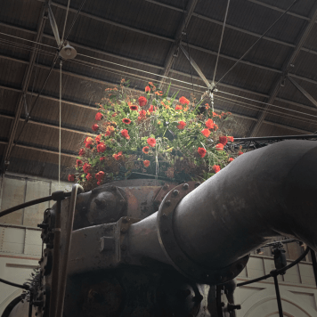 De Nacht Van Exclusief - La Brugeoise - bloemen op machine