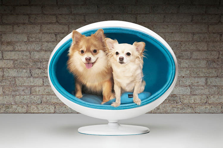 contemporary_pet_furniture_dog_bed_Padpod