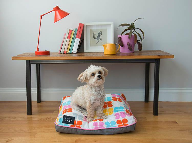 modern-pink-dog-bed-lion-wolf