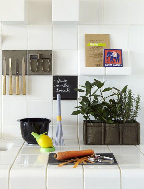 erbe aromatiche da coltivare in casa bacsac