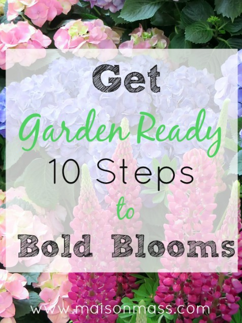 Get Garden Ready; 10 Steps to Bold Blooms
