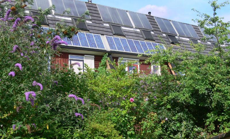 Portrait de la maison écologique idéale