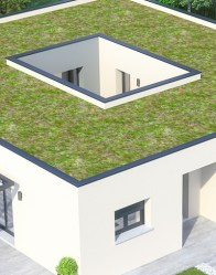 Maison moderne Atria - Toit plat végétalisé