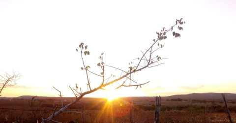 Pôr do Sol em Barra de Santa Rosa, Paraíba