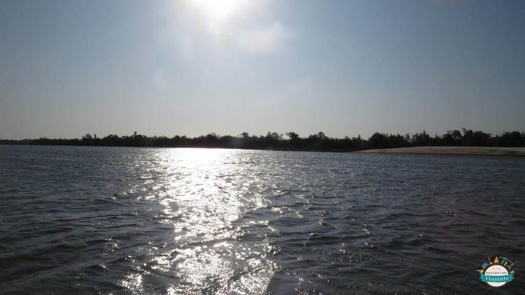 IMG_4818 Raposa, da ilha da discórdia  e das  rendeiras