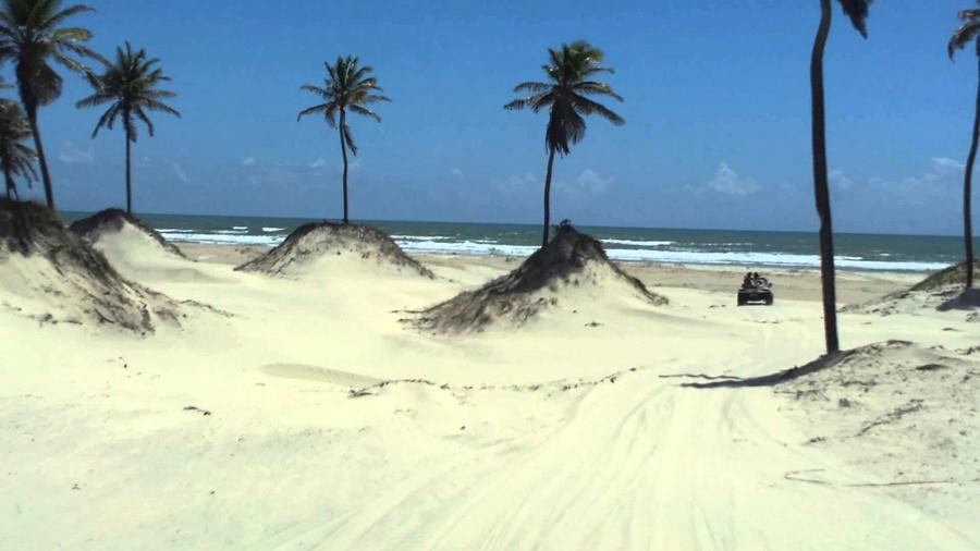 COQUEIROS-MANGUE-SECO Razões para conhecer Mangue Seco