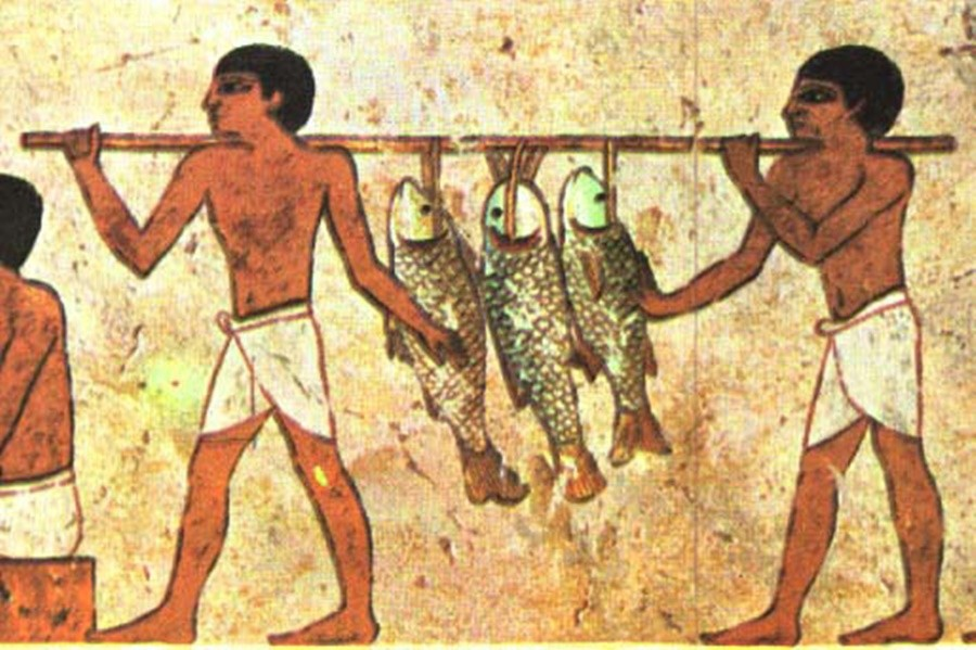 peixes2 O Natal na terra dos faraós