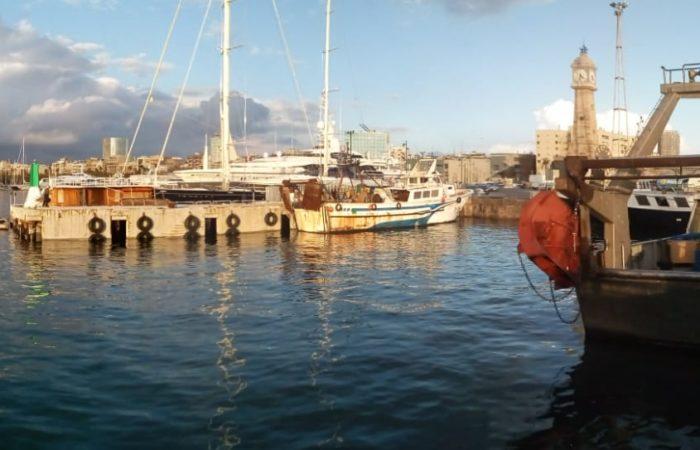 arivo barche da pesca