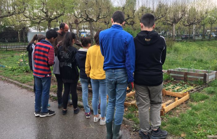 Progetto orti nei cassoni