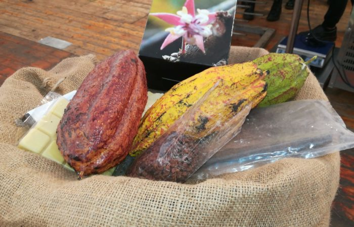 cacao_in fiera