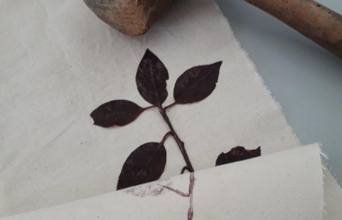 stampe in foglie di cotone