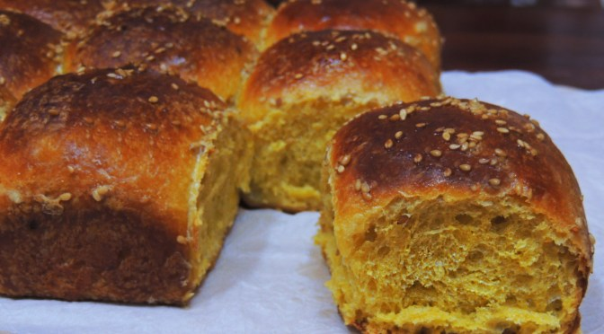 Pumpkin Sourdough Brioche Rolls
