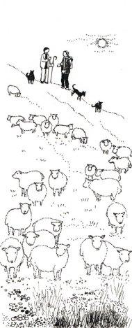 Le troupeau, MaÏte Roche, Panorama, 1985