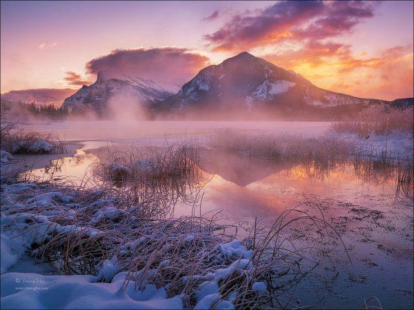 Yiming Hu' Landscape - Winter Wonderlands