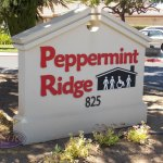 Monument Signs with Dimensional Lettering
