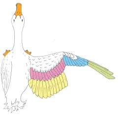 Clipping Duck Wings Diagram 1988 Ez Go Electric Golf Cart Wiring Majestic Waterfowl Sanctuary Newsletter The