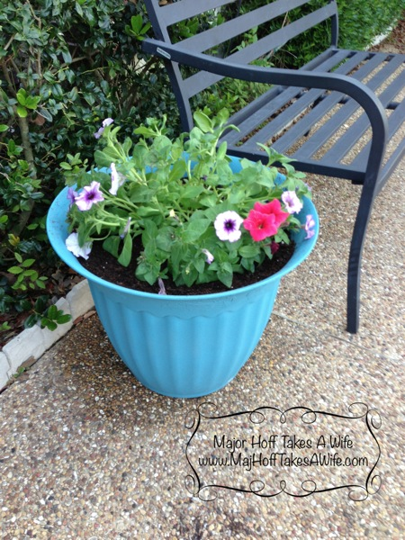 Planter after pretty flowers bench