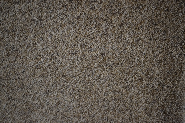 A perfect texture for a playroom. Great at hiding dirt!