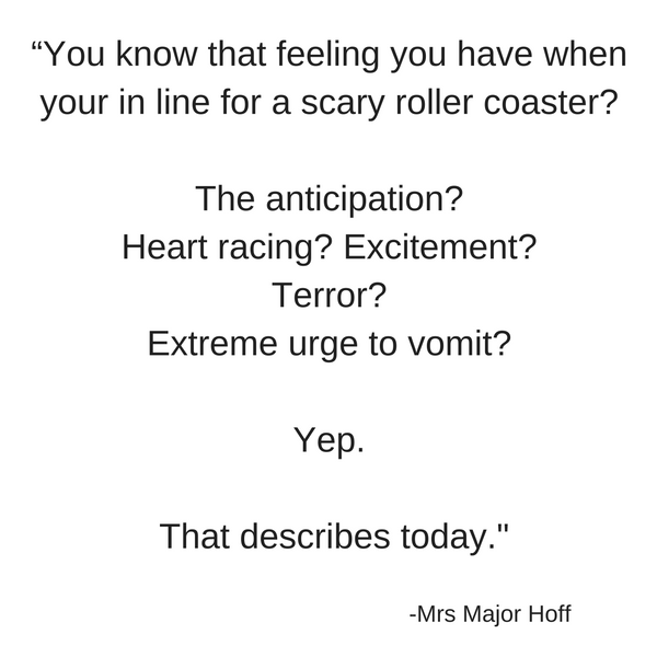 Roller Coaster Quote